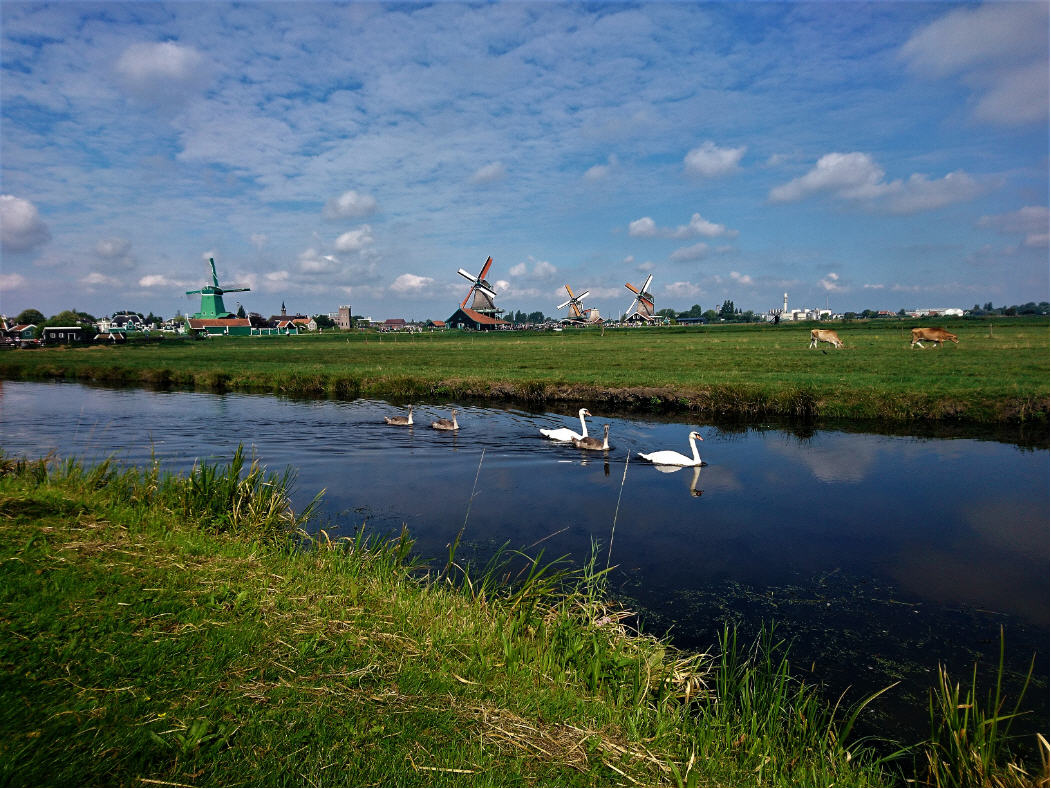 Private Countryside Tour Amsterdam VIP Tours